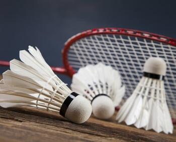 badminton_startseite